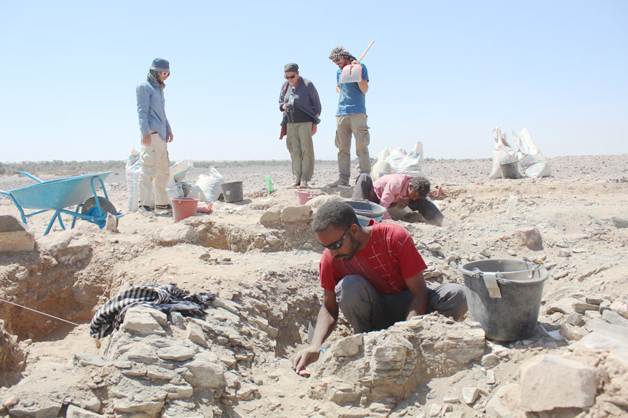 Members of the Mograt Island Archaeological Mission working at the Bronze Age cemetery near Karmel (photo: Annett Dittrich)